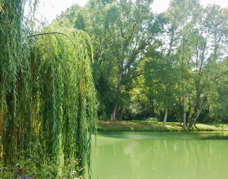 Parc de l'Eiblen 2 - Ensisheim (68)