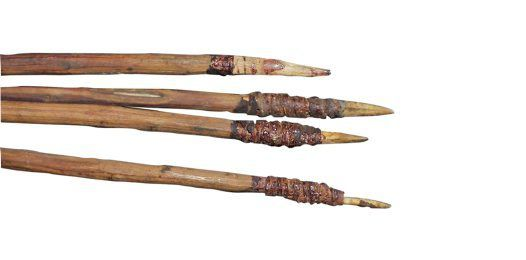 Aboriginal tools my culture blog for How to make a fishing spear