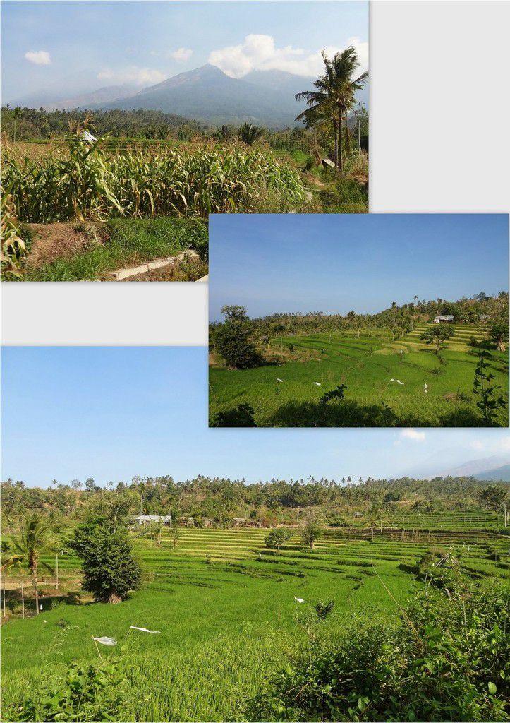 Teres Genit, vallée perdue de Lombok