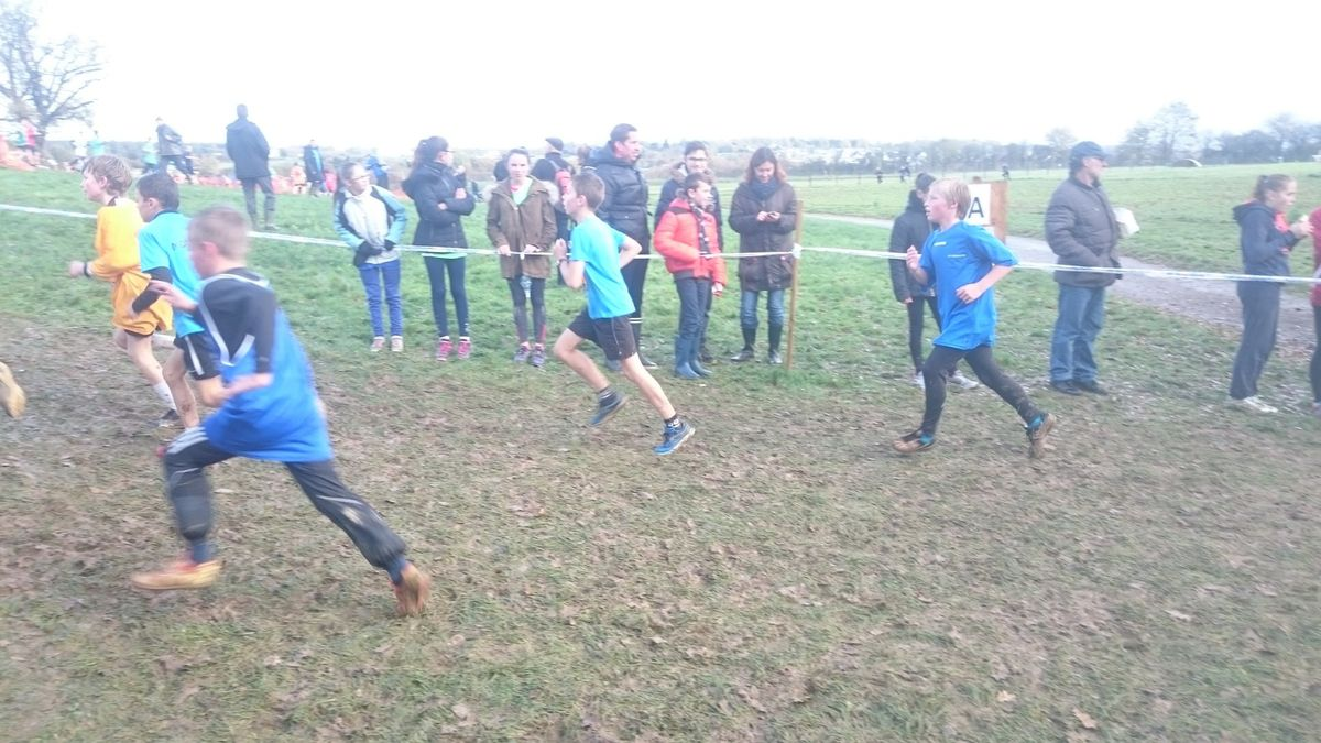 Cross départemental 2015