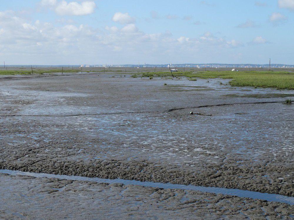 Le Bassin d'Arcachon, à marée basse...