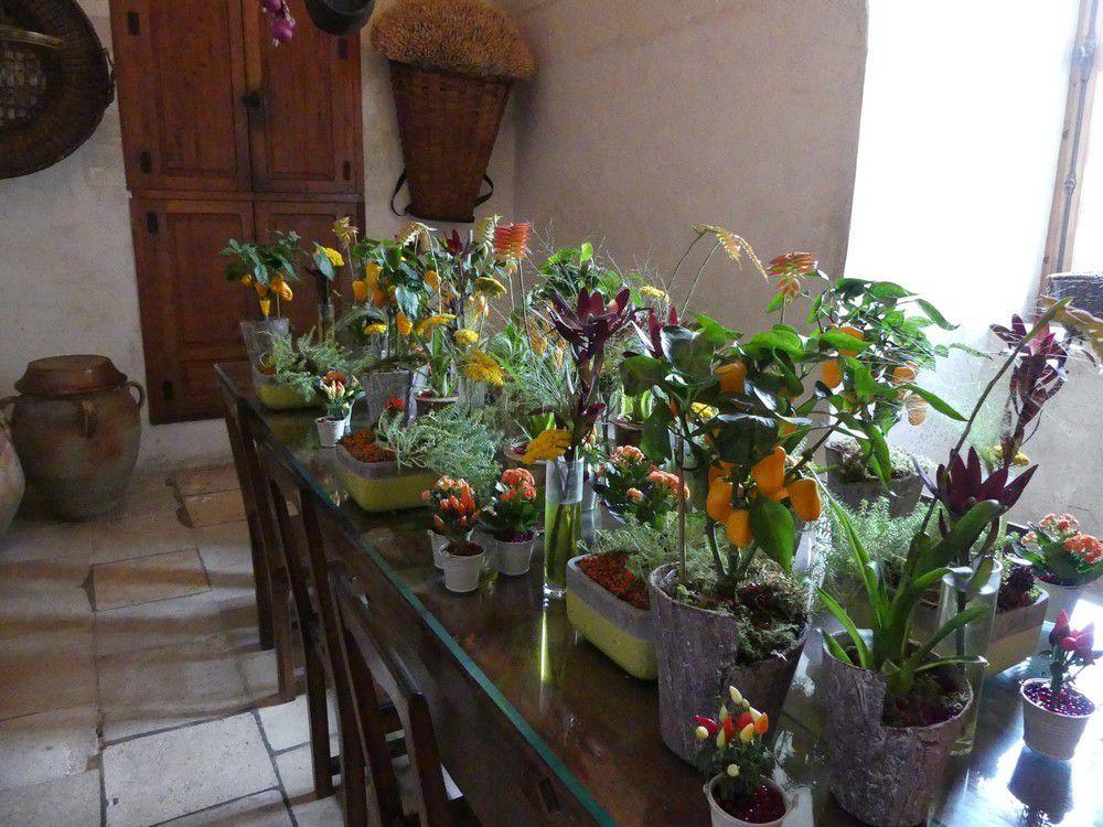 Le château de Chenonceau : les cuisines...