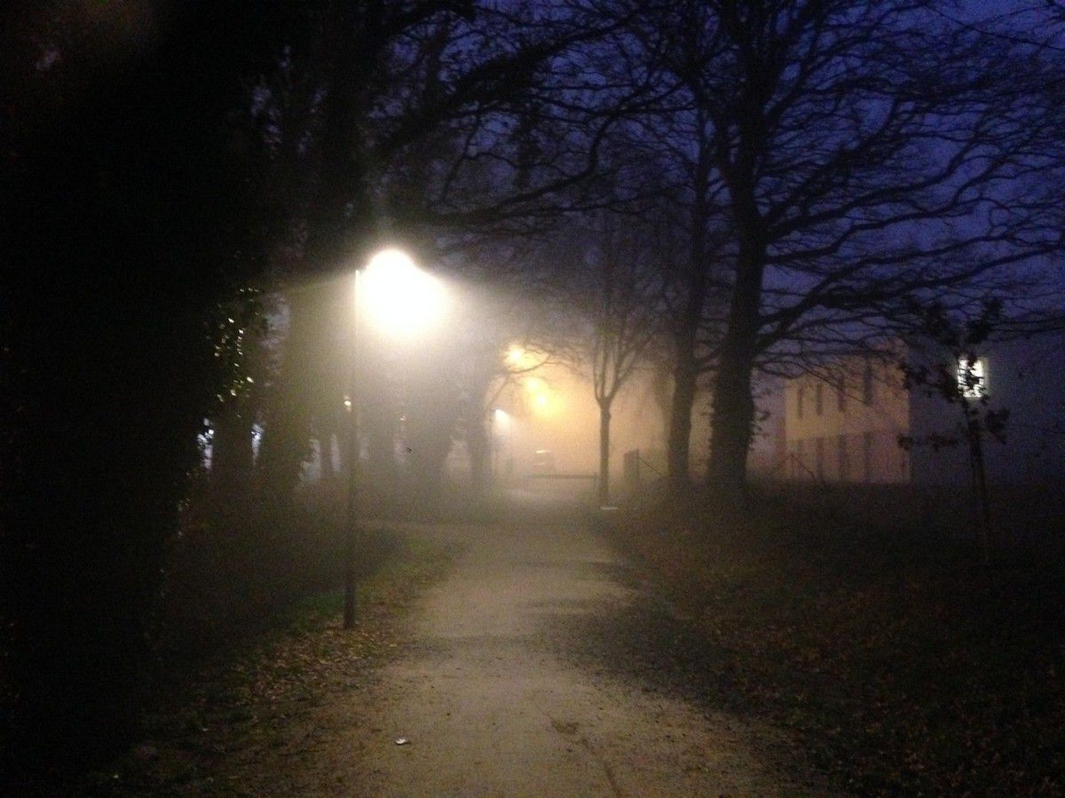 Une marche dans le brouillard