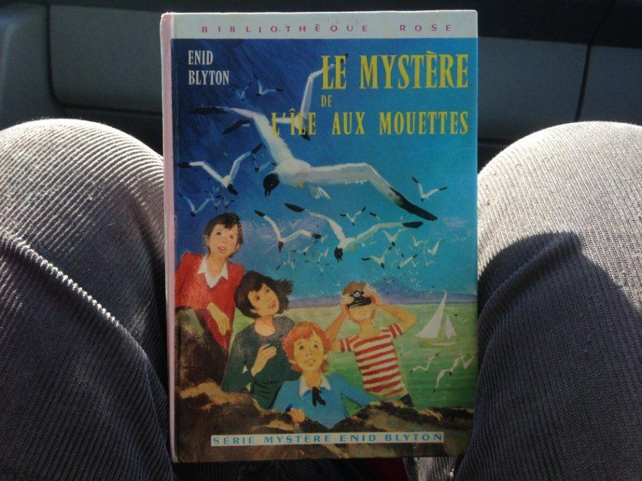 Livre : Le mystère de l'île aux mouettes