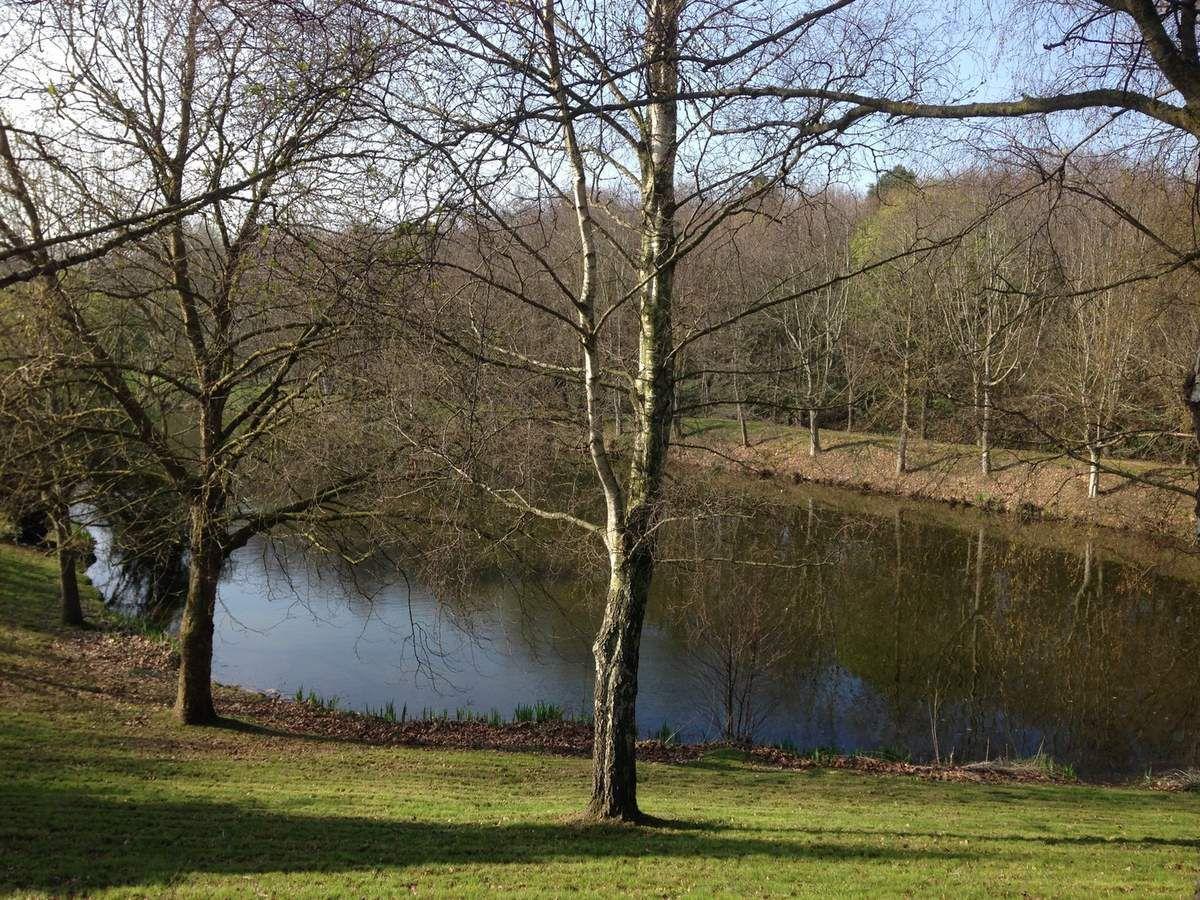 L'étang de l'Écluse