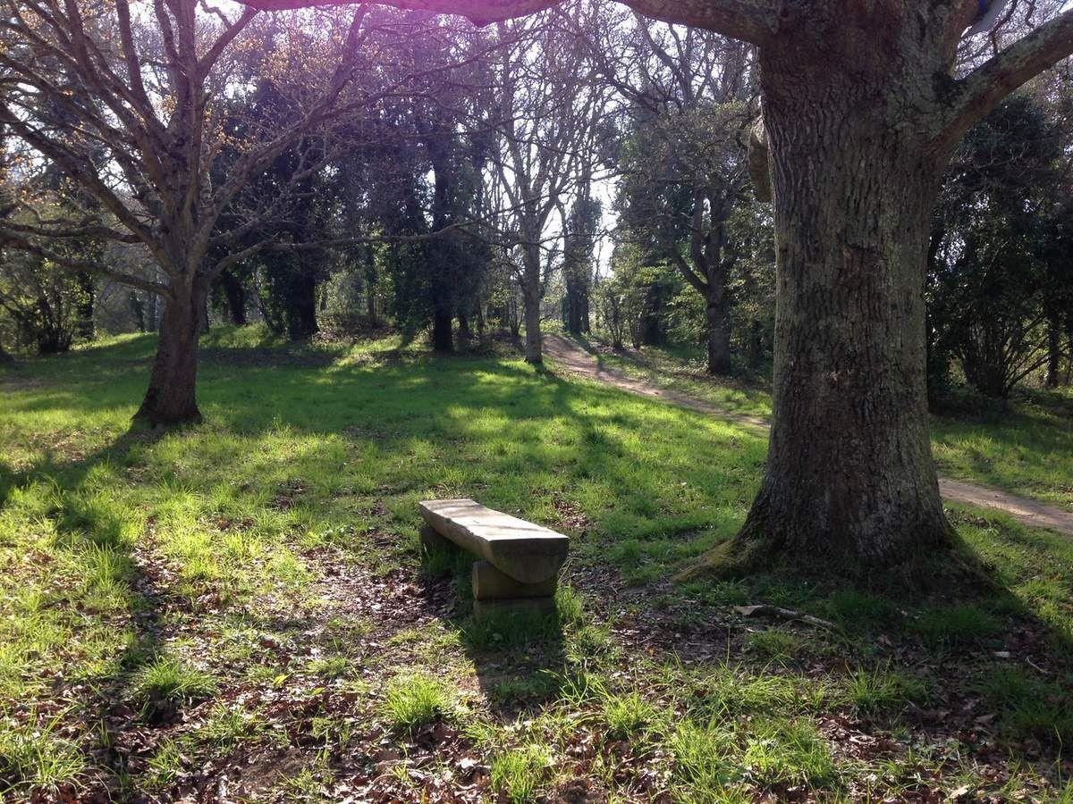 Une journée au Bois Boissel
