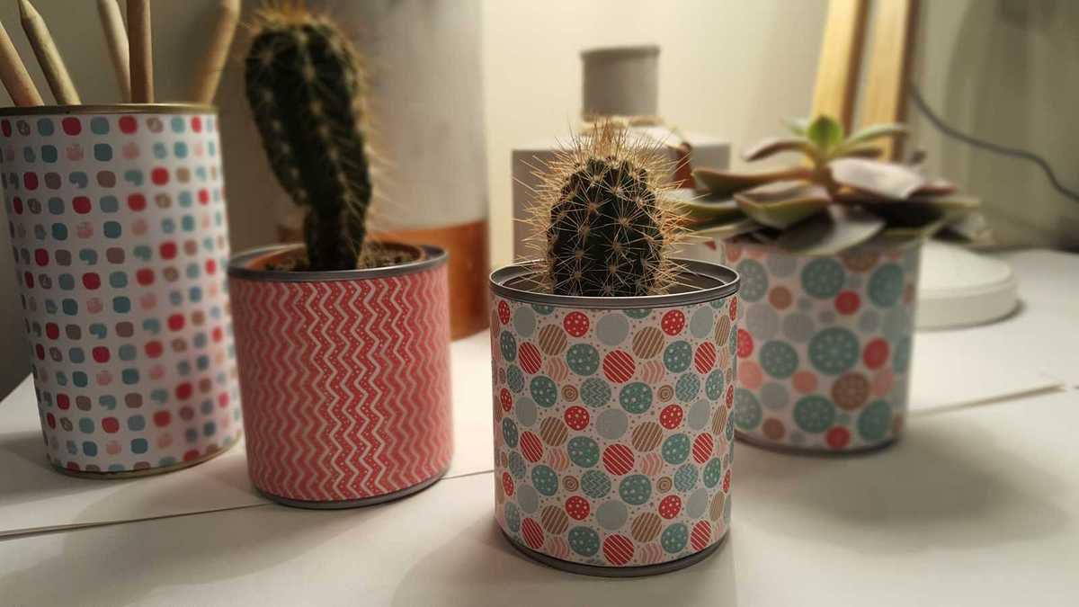 Idée Cadeau N° 4: les minis cactus