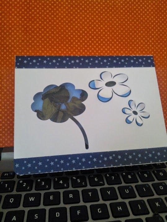 Boîte fleur silhouette studio