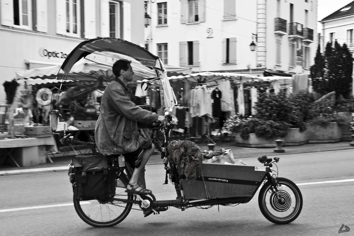 Le lundi au marché de Louhans (Saône et Loire)