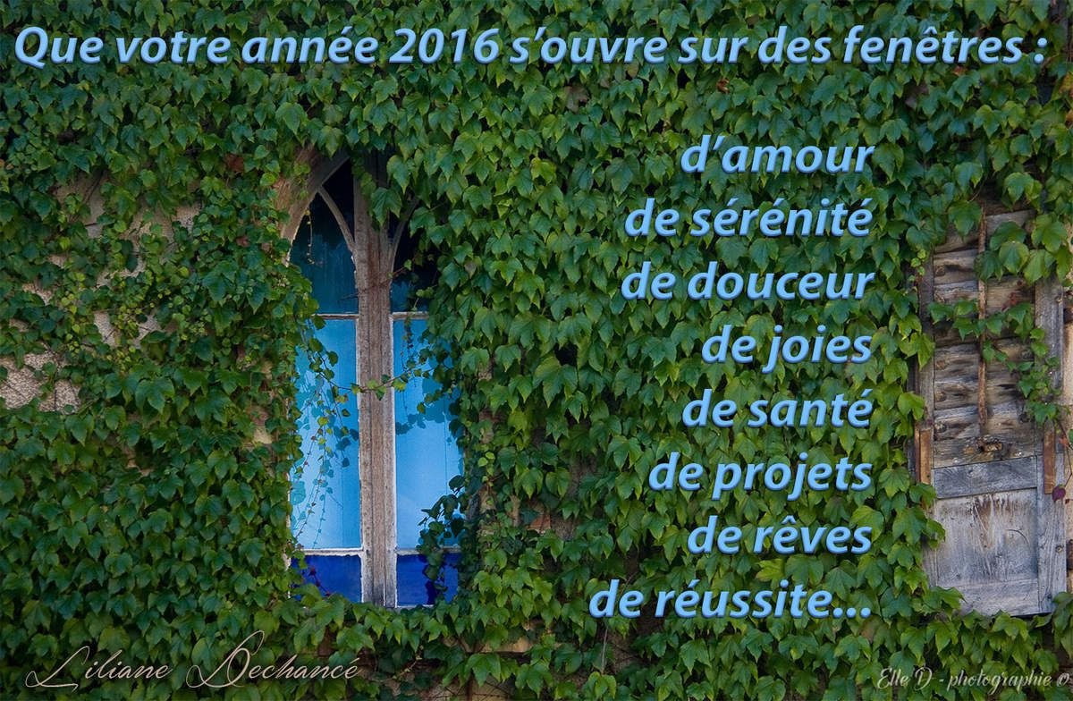 Voeux 2016 !