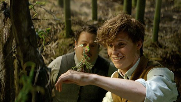 Newt, Pickett et Jacob
