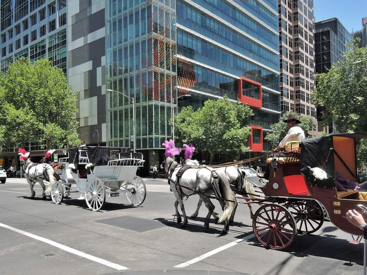 Melbourne .3. Centre ville - Chloé.