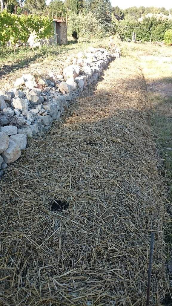 une butte au potager premier essai de permaculture le jardin du caillou. Black Bedroom Furniture Sets. Home Design Ideas