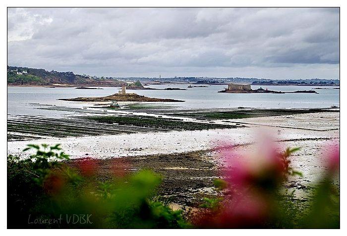 Baie de Morlaix, Château du Taureau et Ile Noire