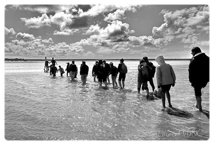 Travervée de la Baie de Somme