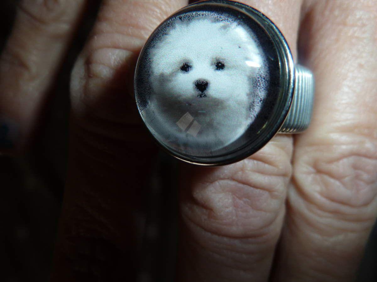 les bijoux pressions je me suis acheter une bague et un bracelet avec des boutons chiens mais j'aurais su plus tôt j'aurais fais faire les boutons avec mes enfants dessus les deux jeunes sont super sympa  et font un travail merveilleux