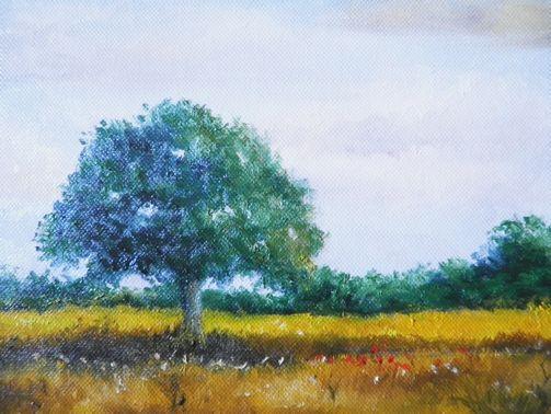 Peindre Un Paysage à Lhuile Prairie Et Premier Plan Les
