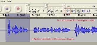 Préparer les lectures du prochain livre sonore (que vous enregistrerez à la rentrée).