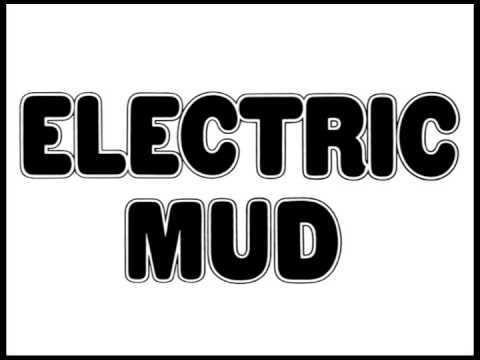 Muddy Waters,Electric Mud