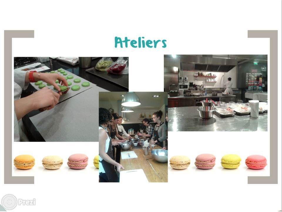 Gastronomia, Contatos, Passeios e Negocios...