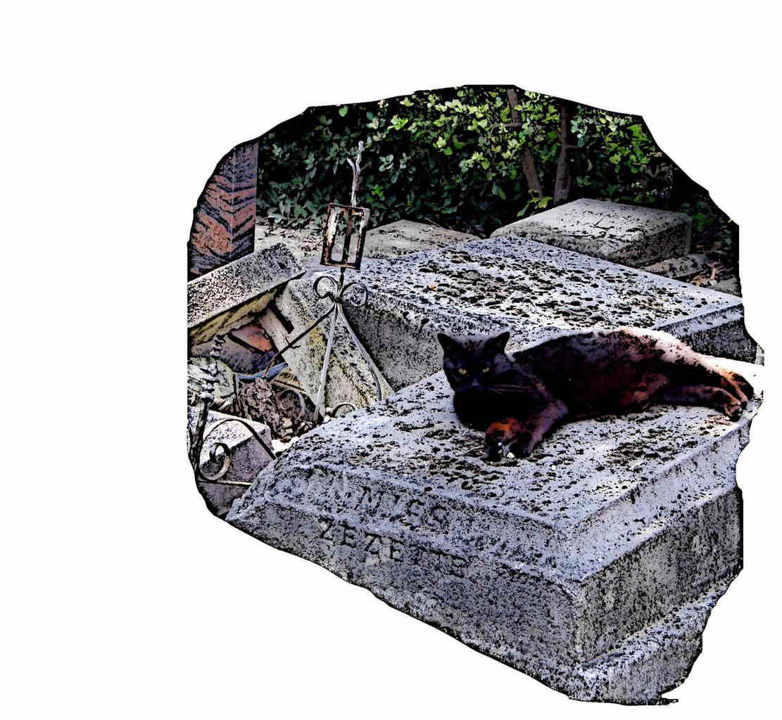 Cimetière des chiens (Asnières-sur-Seine)