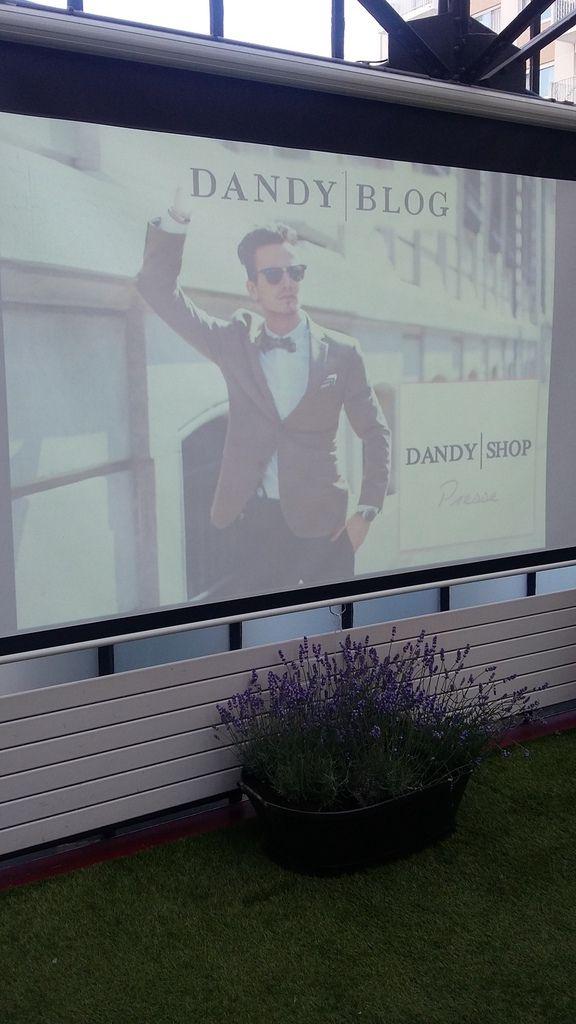 Dandy Blog
