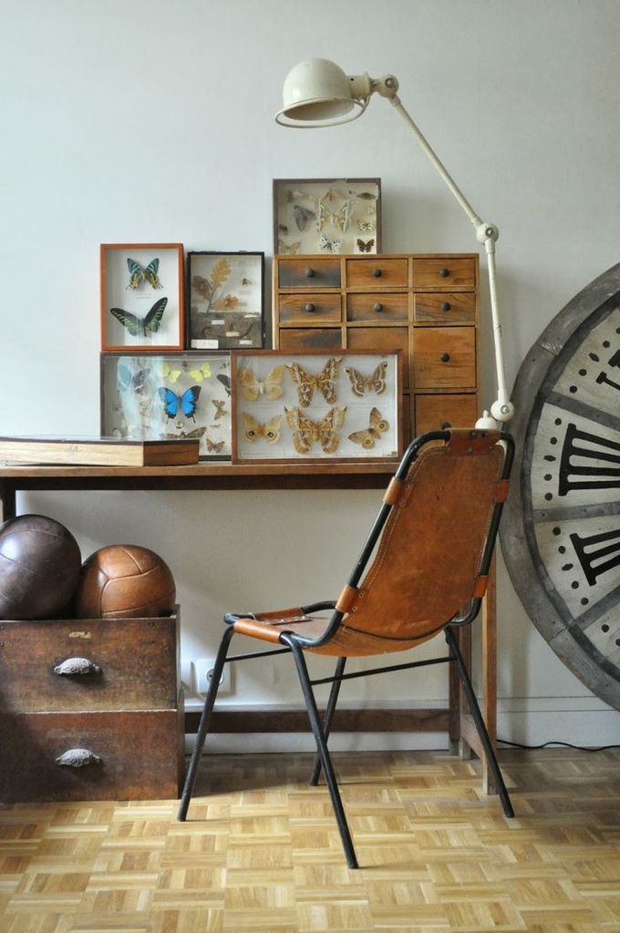 Inspirations : Le Cabinet de Curiosités