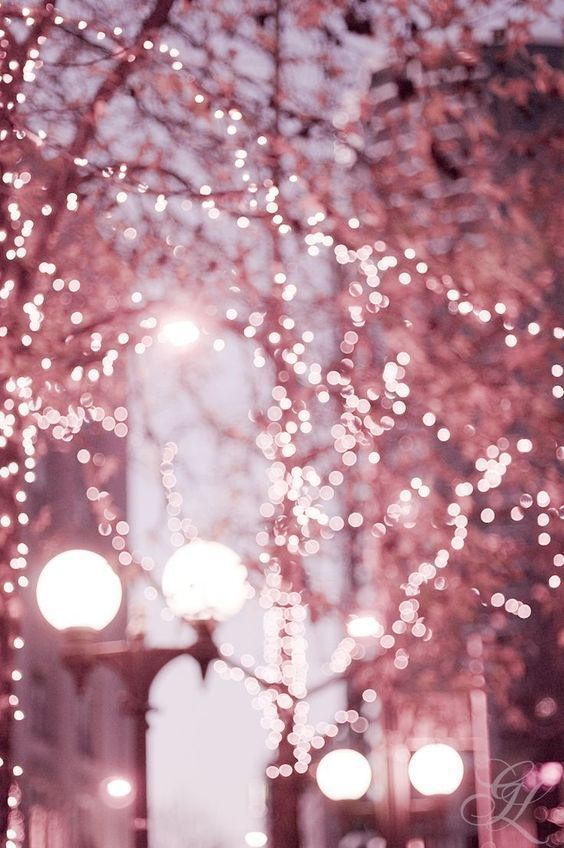 Inspirations: La vie en Rose