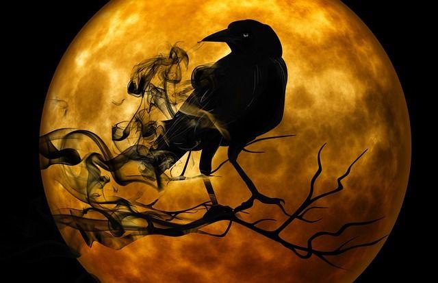 Dix films pour frissonner à Halloween