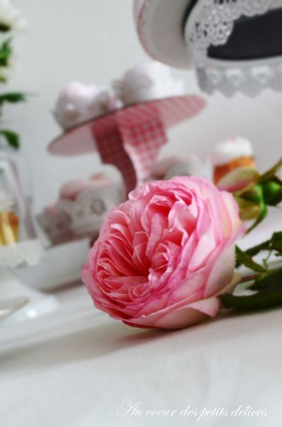 Sweet table rose et blanc