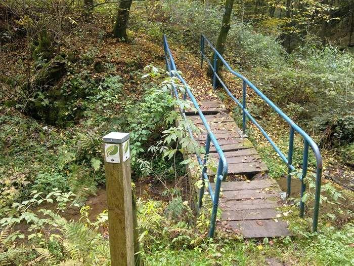 keine Sorge, der Weg führt rechts an der maroden Brücke vorbei