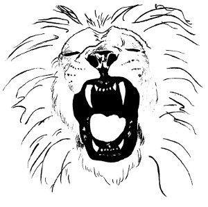 Trail Richard Coeur de Lion
