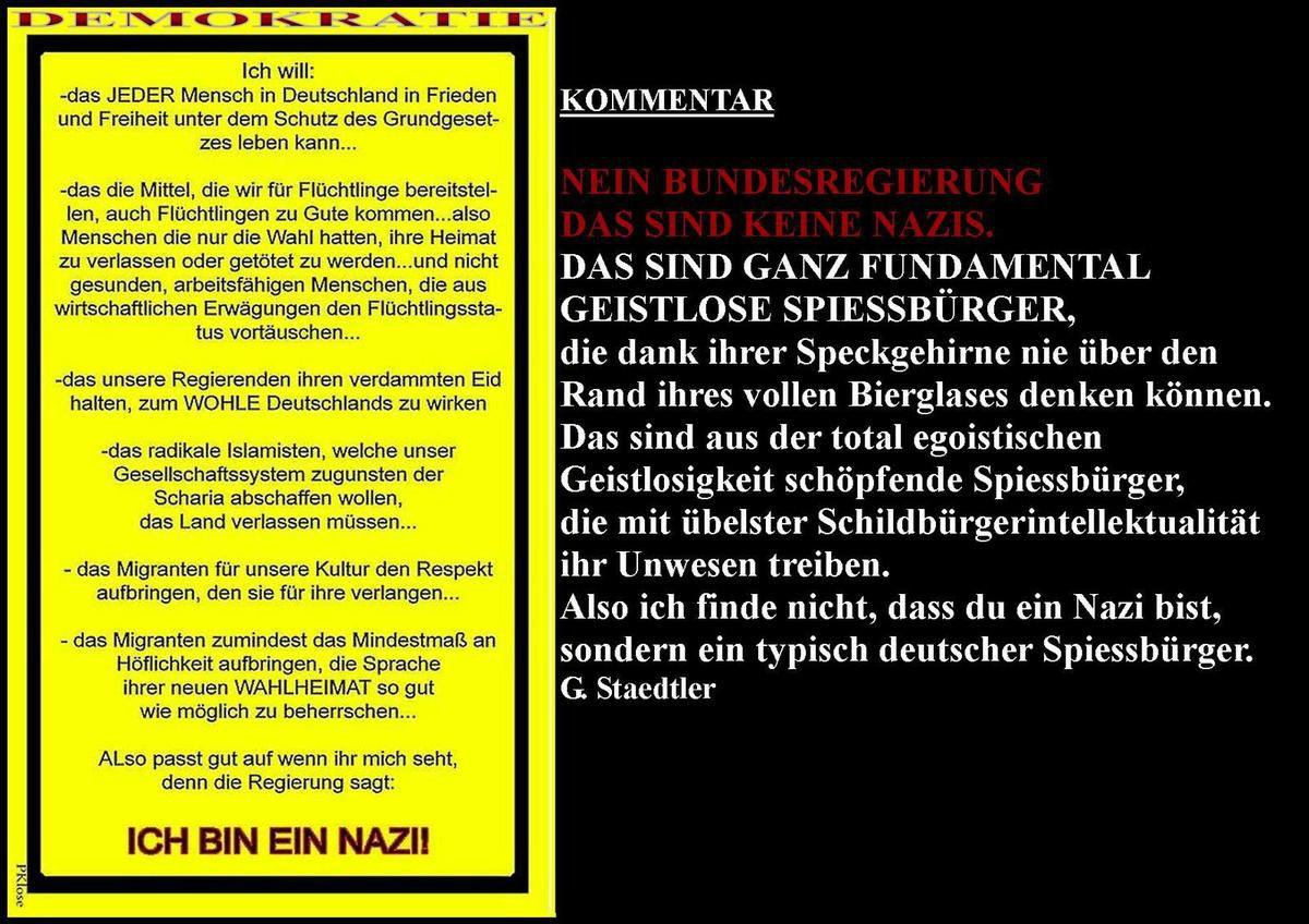 DIE DEMOKRATIE DER SCHILD- &amp&#x3B; SPIESSBÜRGER.