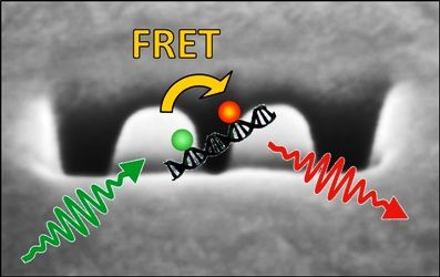 Nanogap optical antennas to enhance FRET