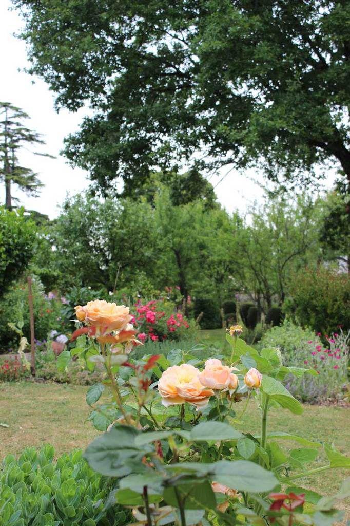 Visite du jardin de M et Mme Desphelippon à CDL