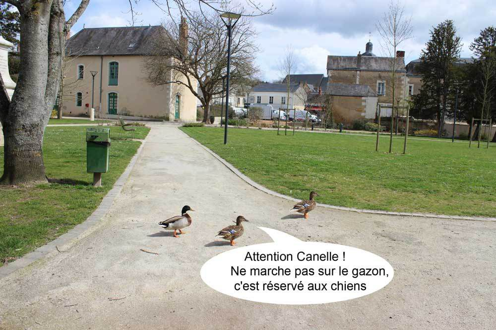 ....Attention Canelle !!!....