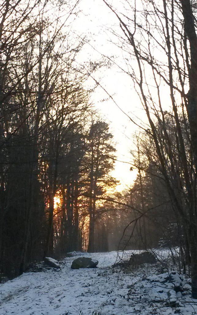 Janvier 2017