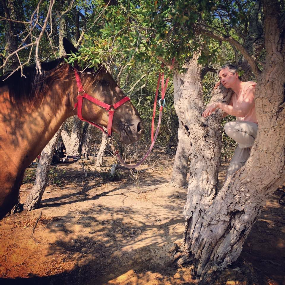Die mit den Pferden tanzt