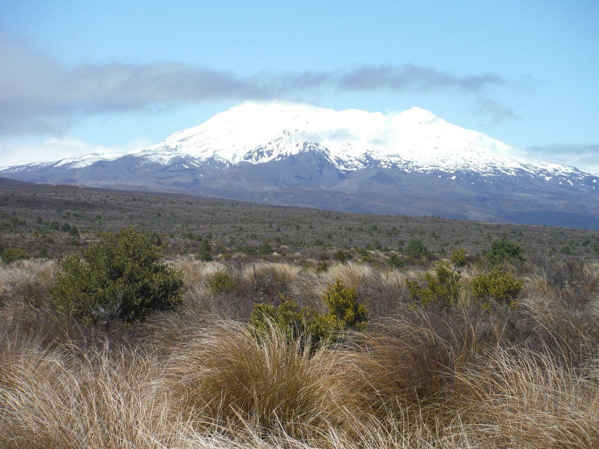 Nouvelle Zélande oct-nov 2015