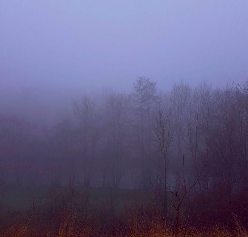 On a souvent vu le brouillard et ses ambiances mystérieuses