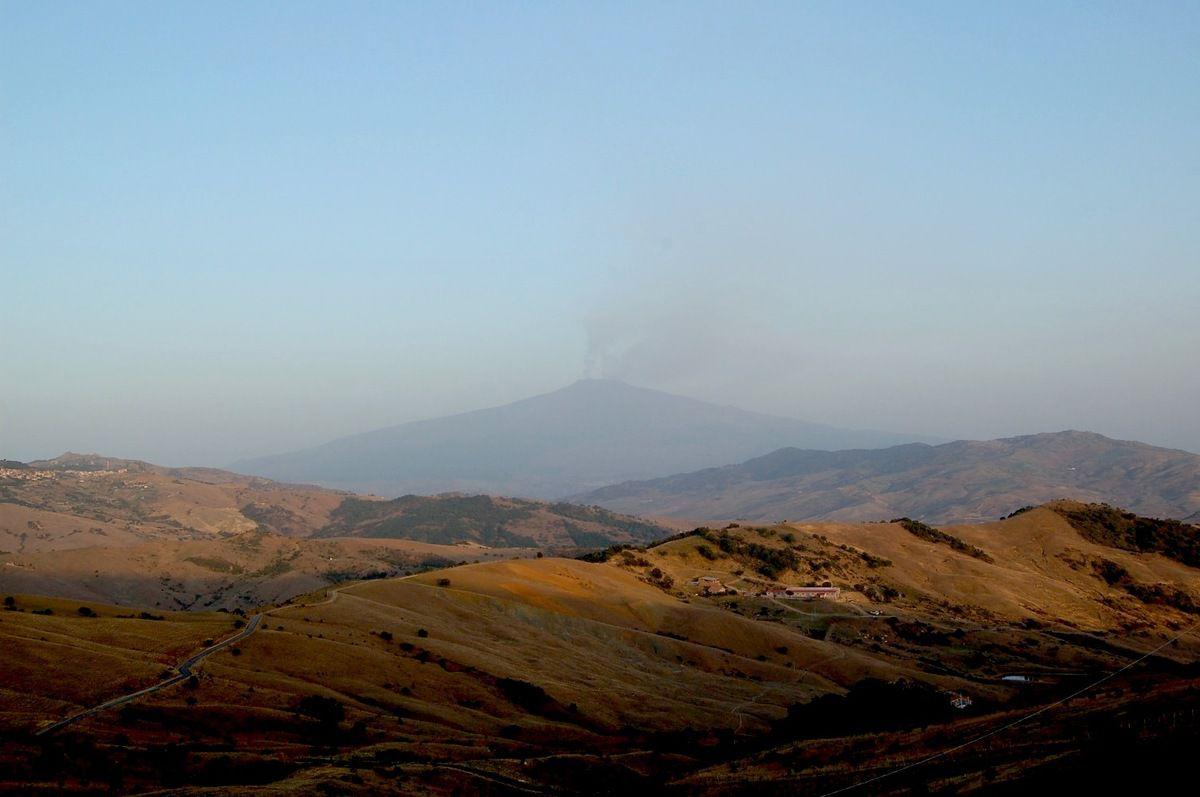 Sicilia, alla ricerca delle vipere dell'Etna.