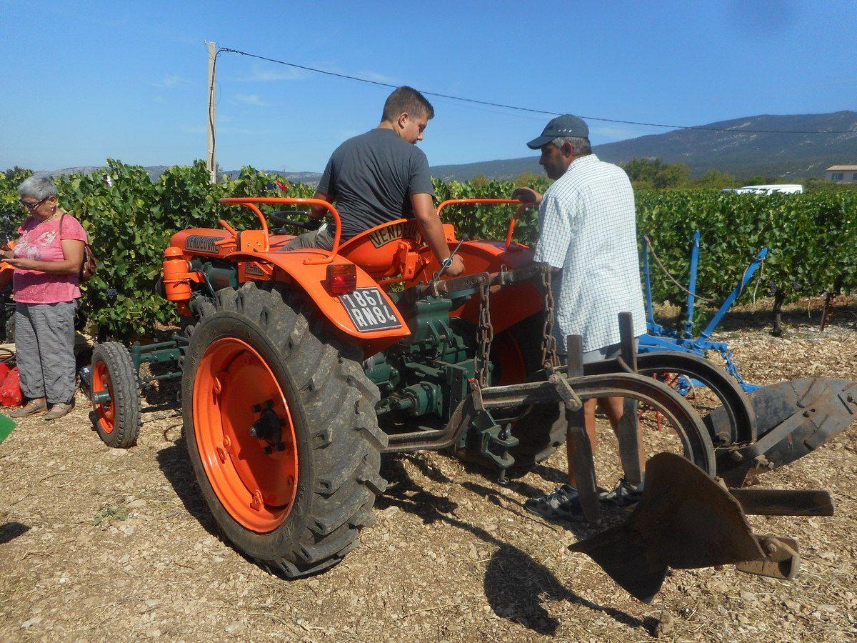 Fête des vieux tracteurs à sainte Colombe (84) dimanche 28 août 2016