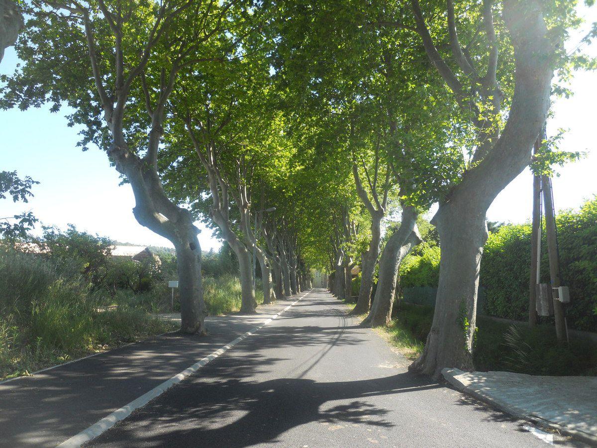 LES RENDEZ-VOUS DE LA REINE, un intérêt tout particulier pour le patrimoine routier d'hier.
