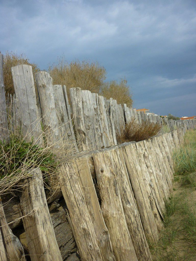 Palissade sur la plage