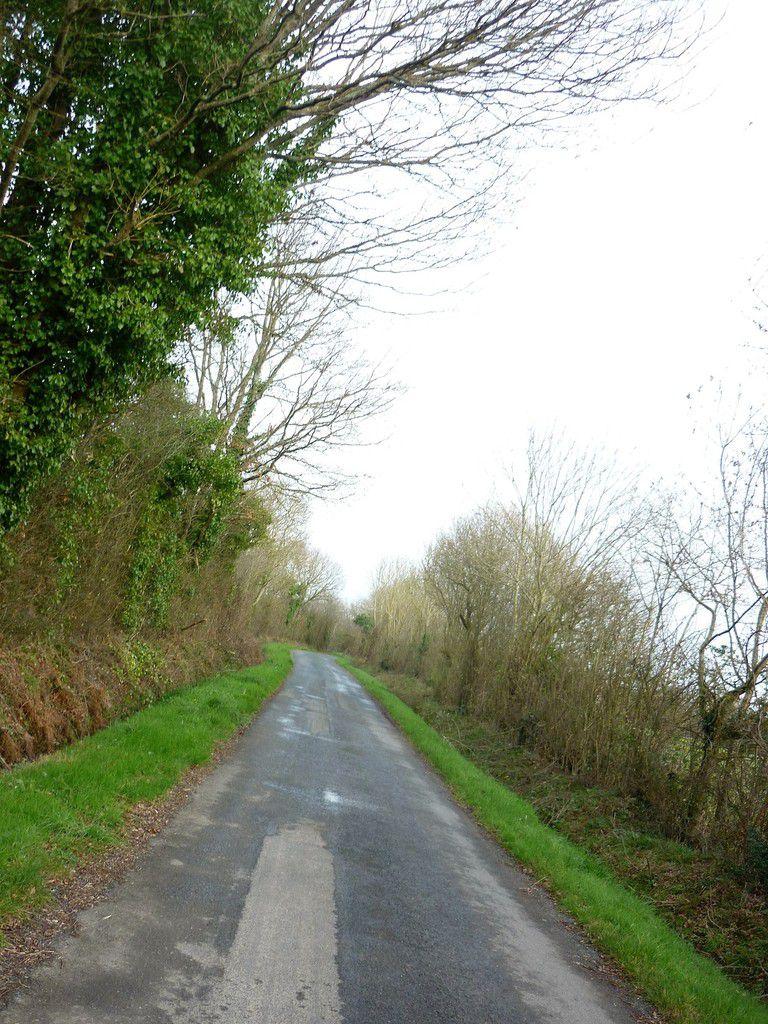 Promenade dans la nature Vendéenne - 2/2