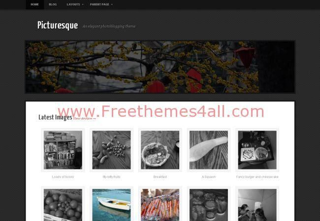 White Black Joomla Gallery Theme