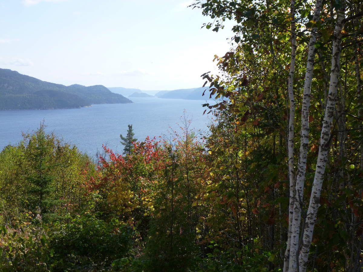 Le point de vue sur le fjord.