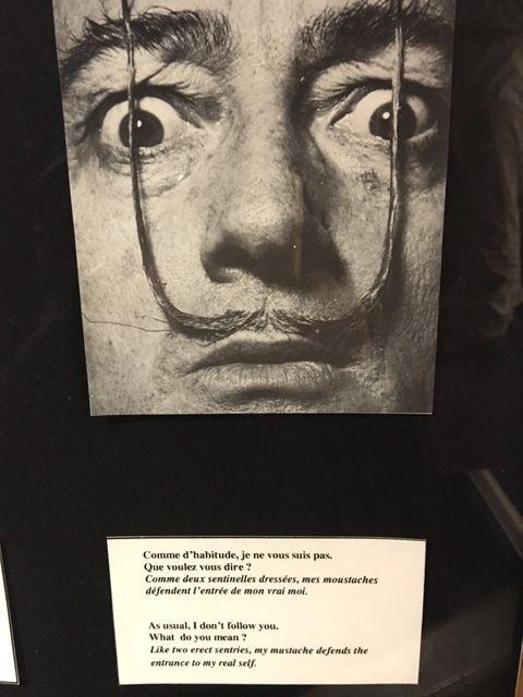 Le surréalisme...c'est moi ... Salvador Dali