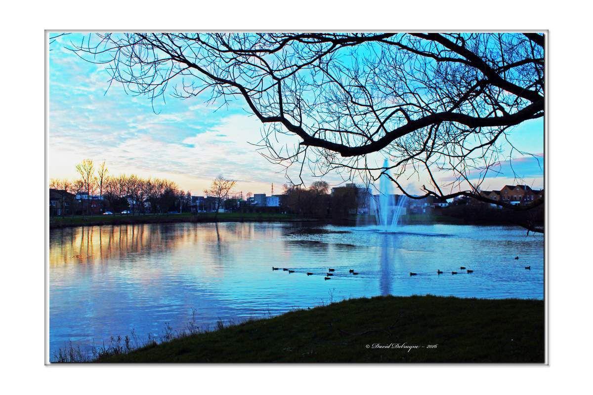 un soir d'hiver au lac du courghain de Grande-synthe
