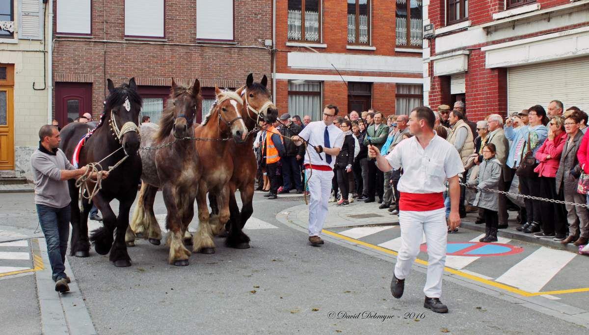 fête du cheval de trait a la Mei Feest